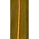 DU-101 面発光COBフレキシブルテープLED 赤 5V用