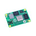 RPI-CM4102032